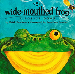The Wide Mouthed Frog book cover